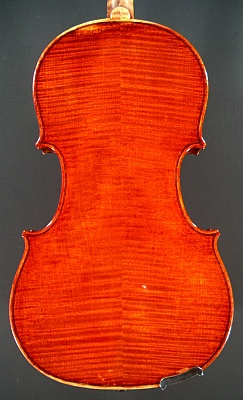 back of a new violin made by Roland Terrier, 1980